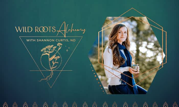 Shannon Curtis ND - Naturopath Brand poster by Tracy Raftl