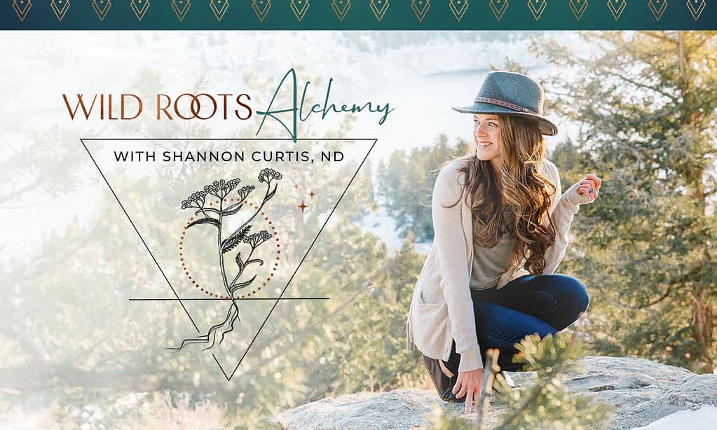 Shannon Curtis, Naturopath - Brand Poster designed by Tracy Raftl